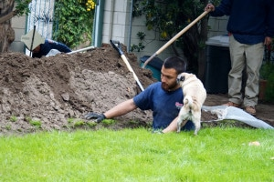 Honest-Plumbing-Emergency-Plumber-Sewage-Sewer-Line-Location-Replacement-1832